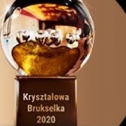News Crystal Brussels Prize to prof. T. Burczyński