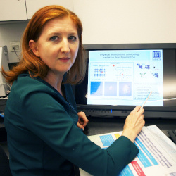 News In cooperation with the National Centre for Nuclear Research